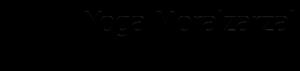 Yoga Iyengar® en Moralzarzal